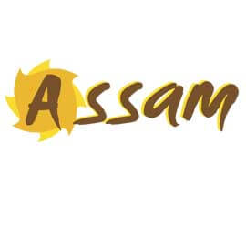 Assam Districts
